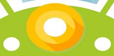 Google дала подсказку о том, как будет называться следующая версия Android