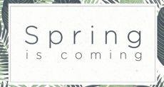 HTC обещает сюрприз на 20 марта