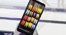 Honor 10 и все будущие смартфоны Honor получат одну общую черту