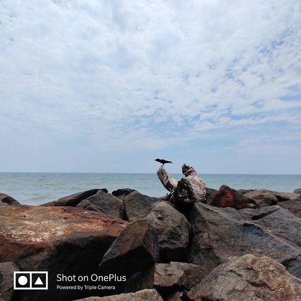 Показали работу 3-кратного зума камеры OnePlus 7 Pro – фото 1
