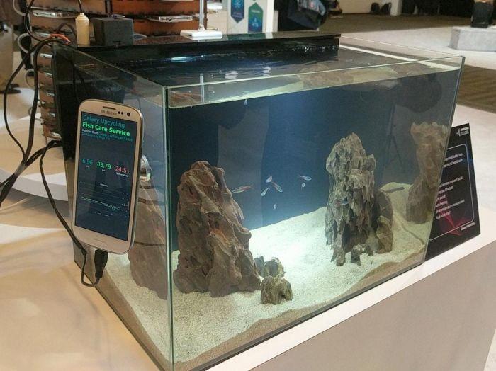 Samsung создала установку из Galaxy S5 для майнинга криптовалюты – фото 3
