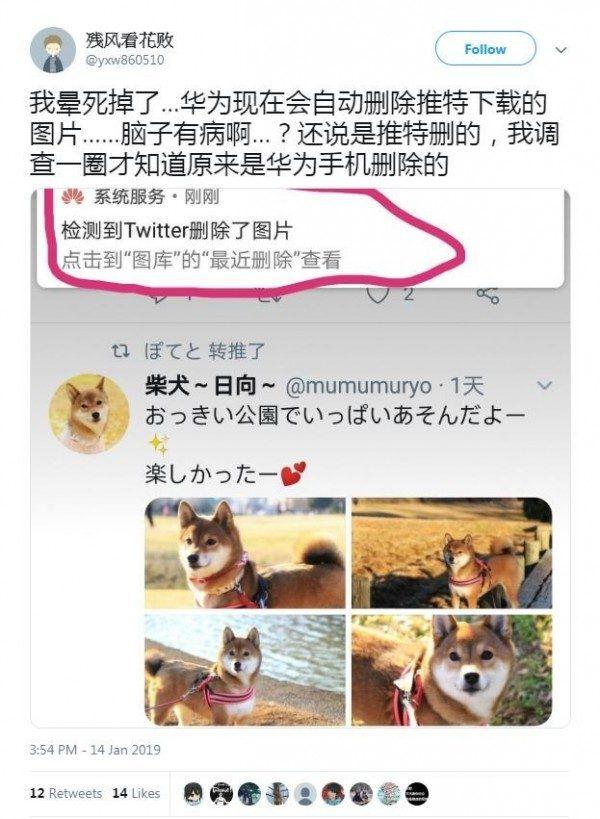 Huawei не желает, чтобы пользователи в Китае качали изображения из Twitter – фото 1