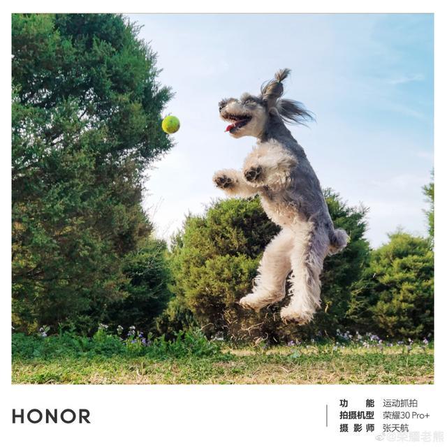 Готовится к премьере Honor 30 Pro + – фото 2