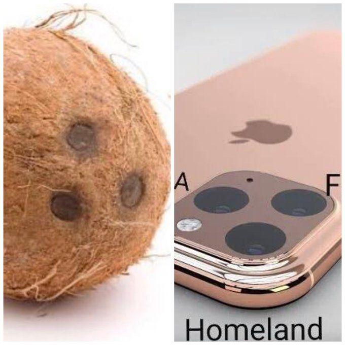 Как в Интернете троллят iPhone 11 – фото 4