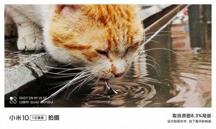 На что способна камера Xiaomi Mi 10 – фото 3