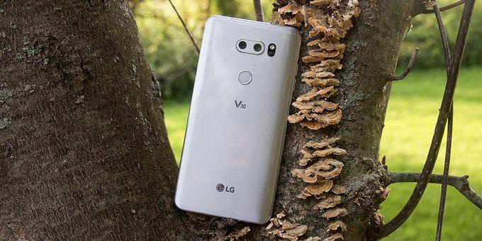 Это LG V30 и вот как снимает его камера – фото 1
