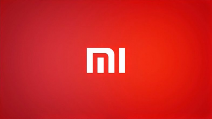 В серии Xiaomi Redmi может появиться смартфон с LCD-дисплеем с соотношением сторон 18:9 – фото 1