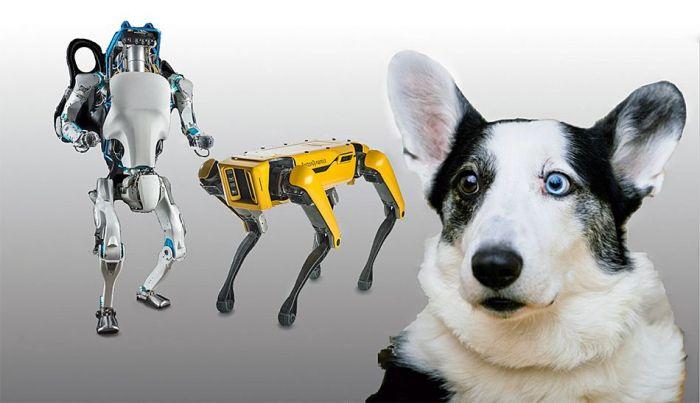 Boston Dynamics продолжает пугать нас своими достижениями – фото 1