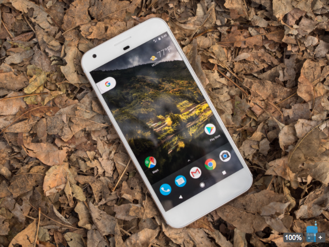 Google не в состоянии удовлетворить спрос на смартфоны Pixel и Pixel XL – фото 1