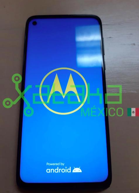 Смотрим на «живые» фото Moto G Stylus и узнаем его характеристики