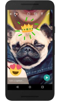 WhatsApp для Android стал функциональнее при работе с камерой, чем iOS – фото 2