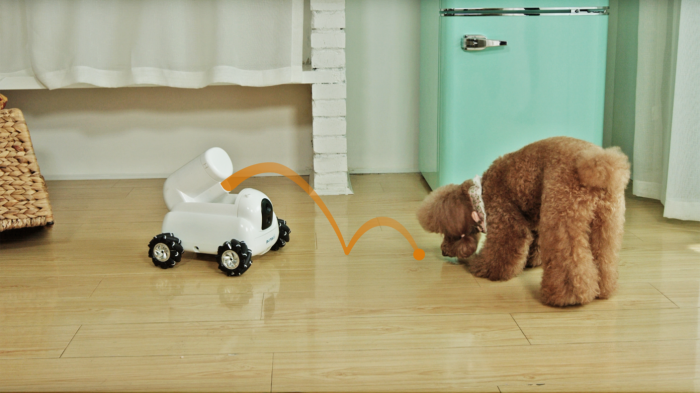 Pumpkii: робот-друг для домашних питомцев – фото 2