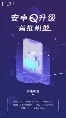 Huawei Mate 20 Pro выбыл из числа участников программы Android Q Beta – фото 1