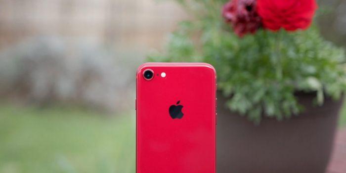 Никакого iPhone 9 и iPhone 9 Plus? Придет iPhone SE 2020? – фото 2