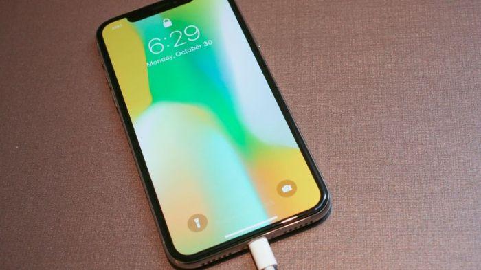 На новых iPhone хорошо наживется Samsung – фото 1