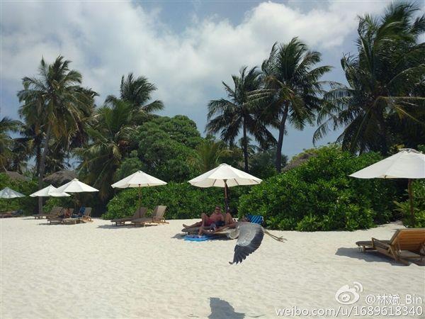 Xiaomi Mi5: президент компании опубликовал фотографии с камеры смартфона – фото 2