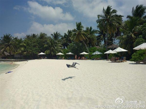 Xiaomi Mi5: президент компании опубликовал фотографии с камеры смартфона – фото 1