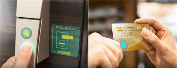 JDI представила экранный сканер отпечатков пальцев – фото 2
