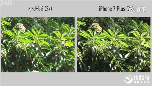 Так ли хороша камера Xiaomi Mi6 в сравнении с iPhone 7 Plus? – фото 4