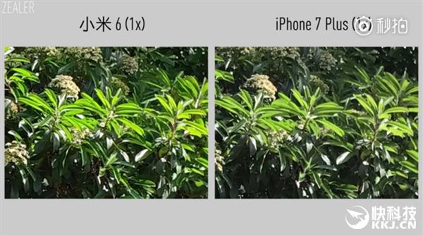 Так ли хороша камера Xiaomi Mi6 в сравнении с iPhone 7 Plus? – фото 7