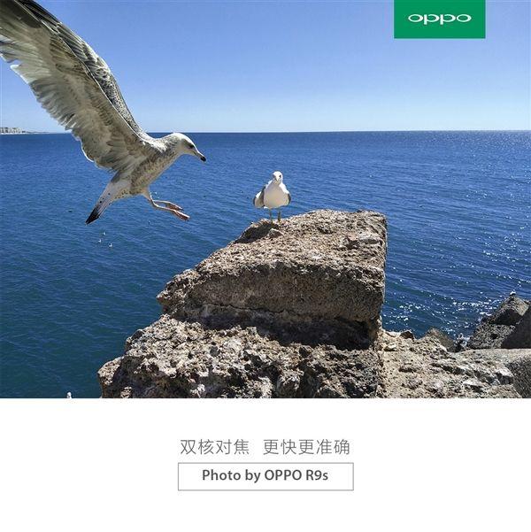 Камера Oppo R9S получит сенсор IMX398 от Sony с автофокусом Dual Pixel, по аналогии с Samsung Galaxy S7 – фото 1
