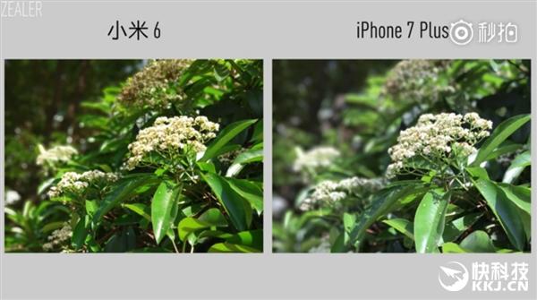 Так ли хороша камера Xiaomi Mi6 в сравнении с iPhone 7 Plus? – фото 5