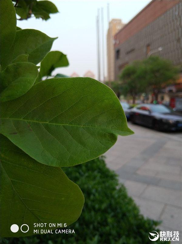 Так ли хороша камера Xiaomi Mi6 в сравнении с iPhone 7 Plus? – фото 12