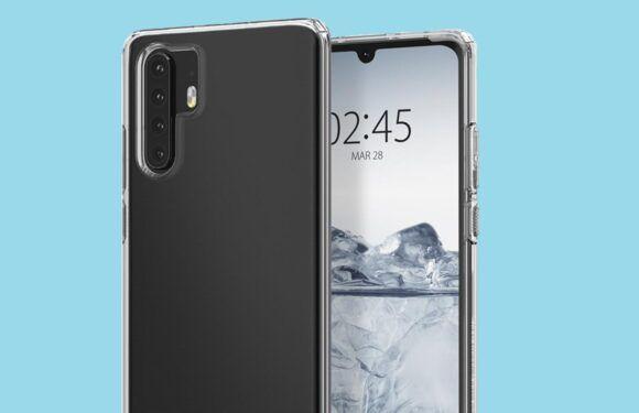 Huawei P30 и Huawei P30 Pro предстали на качественных изображениях – фото 1