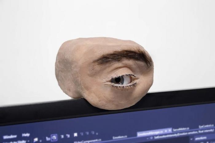 Веб-камеру очеловечили: смотри в глаз – фото 1