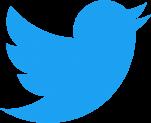 Twitter заблокировал анимированные изображения из-за риска вызова эпилептических припадков