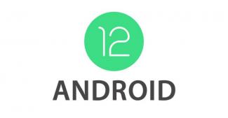 Android 12 Developers Preview 2: главные особенности