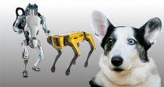 Boston Dynamics продолжает пугать нас своими достижениями