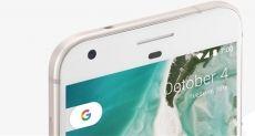Google Pixel 2: в разработке смартфоны с кодовыми именами Muskie и Walleye с Android 8.0