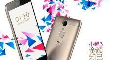 ZTE Small Fresh 3 (C880): продажи смартфона стартовали с ценой $155