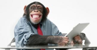 Нейростимулятор от Илона Маска научил обезьяну играть в видеоигру силой мысли