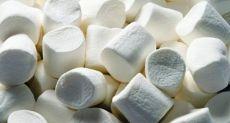 Android 6.0 Marshmallow: список смартфонов, которые получат данное обновление первыми