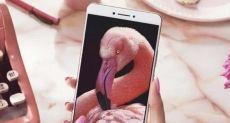 Продажи Xiaomi Mi Max достигли отметки в 1,5 миллиона устройств